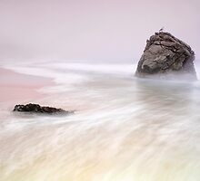 Garrapata Beach Fog by Chris Frost Photography