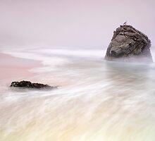 Garrapata Beach Fog by Chris Frost Photography