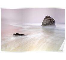 Garrapata Beach Fog Poster