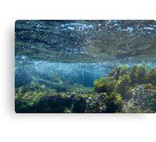 Under the Caribbean Sea Metal Print