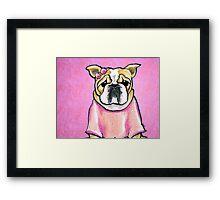 Pink Bow Bulldog Framed Print