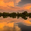 Wings Of Glory - Sawhill Ponds Sunset by nikongreg