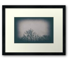 Trees are Art Framed Print