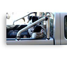 Backseat Drivers Canvas Print