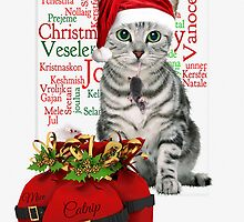 Cat and Mouse Christmas Tabby Card by Doreen Erhardt