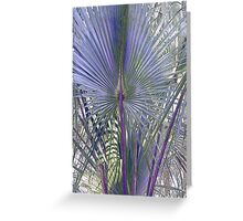 Hontoon Palm Greeting Card