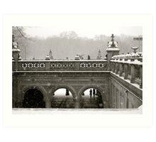 Central Park in Winter Art Print