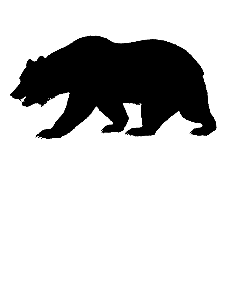 Black California Bear by kwg2200