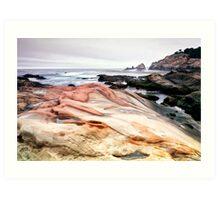 Point Lobos State Park Art Print