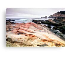 Point Lobos State Park Canvas Print