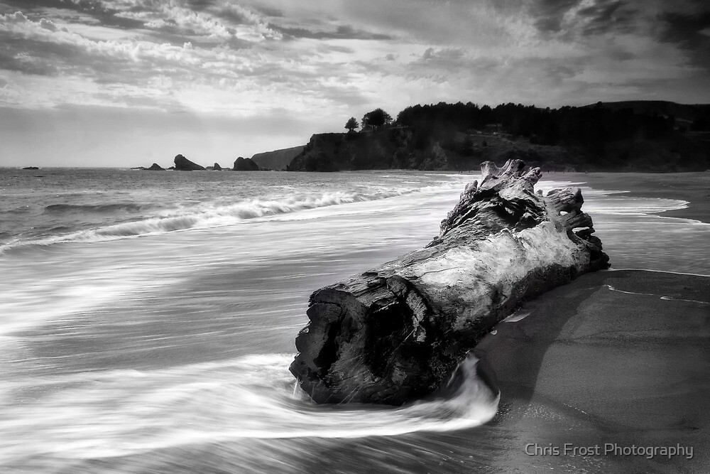 Navarro Beach State Park by Chris Frost Photography