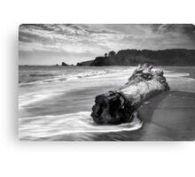 Navarro Beach State Park Metal Print