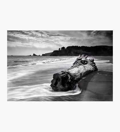 Navarro Beach State Park Photographic Print