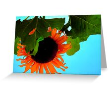 The Sun...Flower Greeting Card