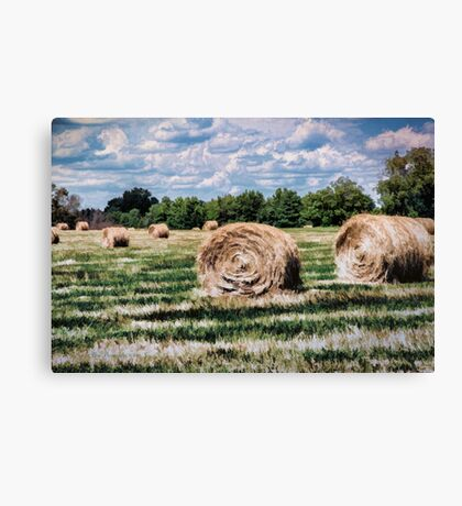 Rural Georgia Canvas Print