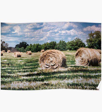 Rural Georgia Poster