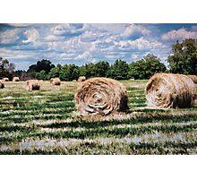 Rural Georgia Photographic Print