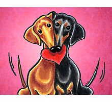 Dachshunds in Love Pink Photographic Print