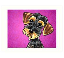 Wild Boar Wire Haired Dachshund Purple Art Print