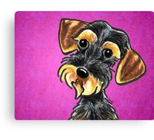 Wild Boar Wire Haired Dachshund Purple Canvas Print