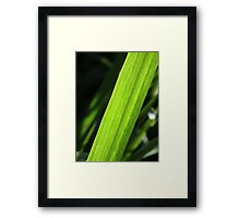 Cut Framed Print