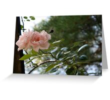 All abuzz about Roses Greeting Card