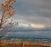 Autumn Storm Approaching by AaronJJones