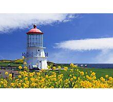 Springtime Lighthouse Photographic Print