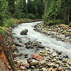 Fitzsimmons Creek 2 by Charles Kosina