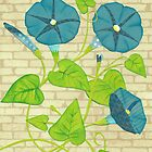 morning glories by brian fuchs