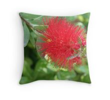 Beautiful Bottle Brush Flower With Garden Background Throw Pillow