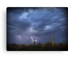 Striking Sonoran Desert Canvas Print