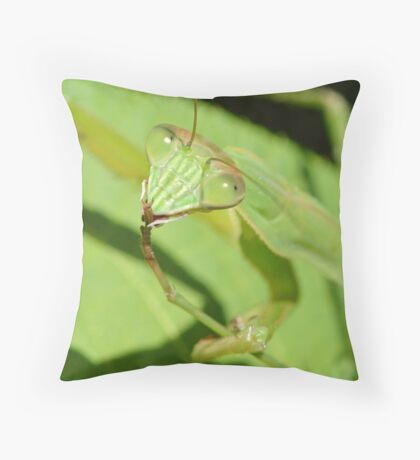 Mantid cover Throw Pillow