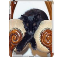 Relaxed Black Cat Sleeping Between Two Chairs iPad Case/Skin