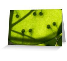 code vital fertile Greeting Card