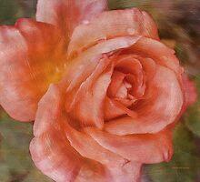 Simply A Rose by Deborah  Benoit