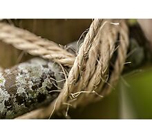 Rope made with wood Photographic Print