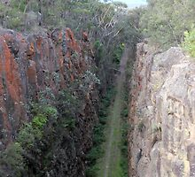 Big  Hill  Railway  Cutting by jainiemac