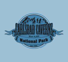 Carlsbad Caverns National Park, New Mexico Kids Tee