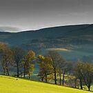 Glentress, Scottish Borders, Autumn 2006 by Iain MacLean