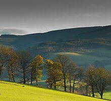 Glentress, Scottish Borders, Autumn 2006 by Iain MacLean
