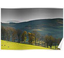 Glentress, Scottish Borders, Autumn 2006 Poster