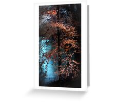 The Glory of Early Light Greeting Card