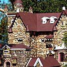 Birdhouse Castle by V1mage