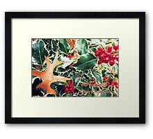 holly christmas Framed Print