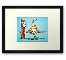 Yellow Lab Dock Dog Framed Print