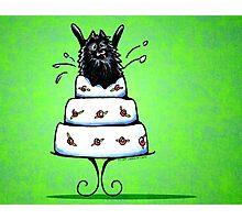 Black Pomeranian Cake Trick Green Photographic Print