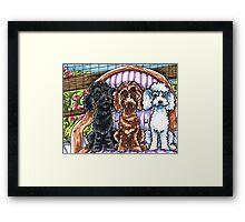 Toy Poodle Summer Spot Framed Print