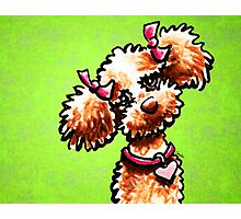 Apricot Poodle Girly Pigtails Green Photographic Print