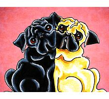 Black and Fawn Pug Hug Red Photographic Print